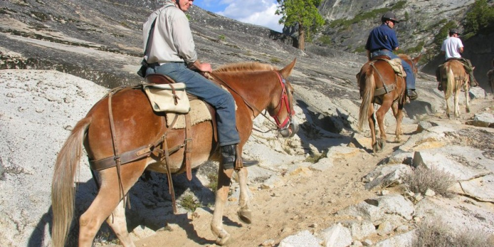 Saddle Trip in Yosemite